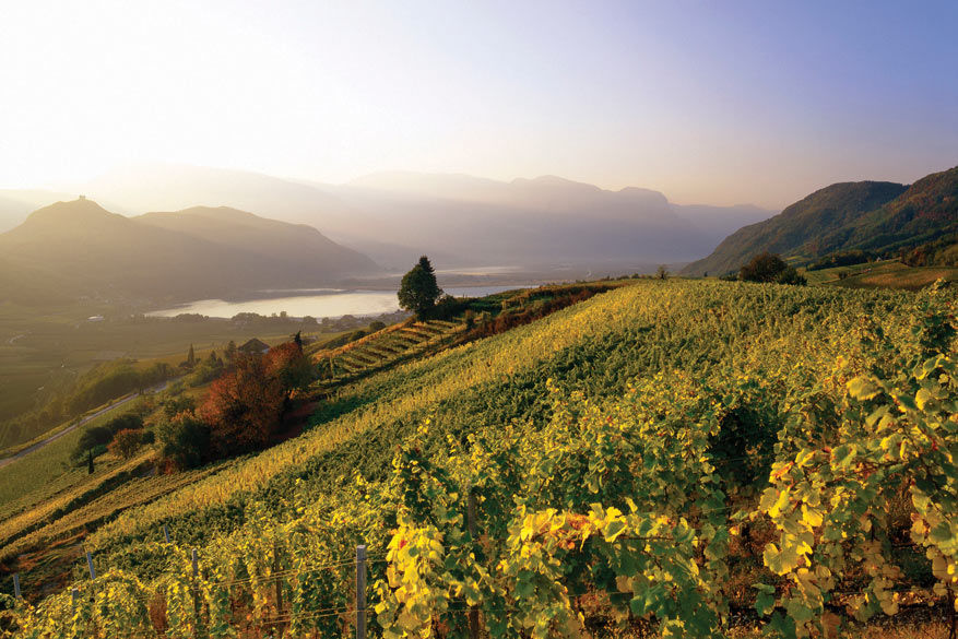 Wijnboerderijen verwennen je niet alleen met wat ze in huis hebben, maar ook met de omgeving.