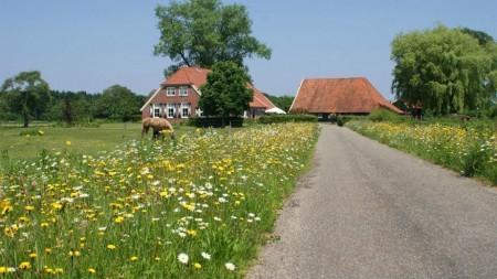 Hartverwarmend verblijf op gastenboerderij de Ziel