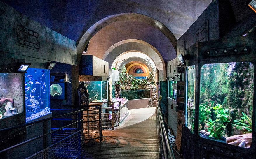 Observeer meer dan 2.500 vissen in het aquarium van Limousin. © Tourisme Haute-Vienne via Flickr
