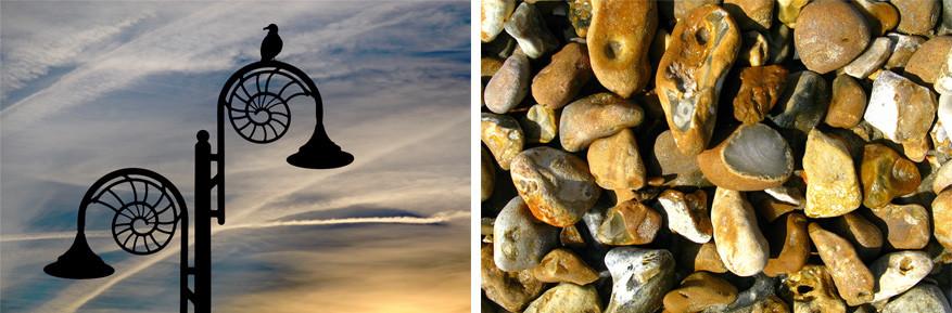 Zowel in Lyme Regis als in Charmouth kun je ongestoord op fossielenjacht. © Wikimedia Commo