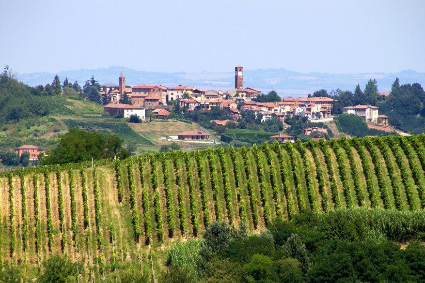 Asti: Monferrato. © Storvandre Photography