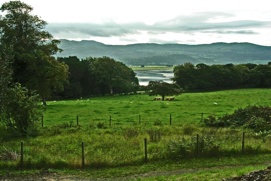 Wales-natuur