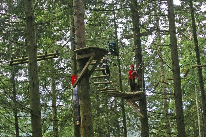 Klim hoog in de bomen in het Tree Top Adventure Park!