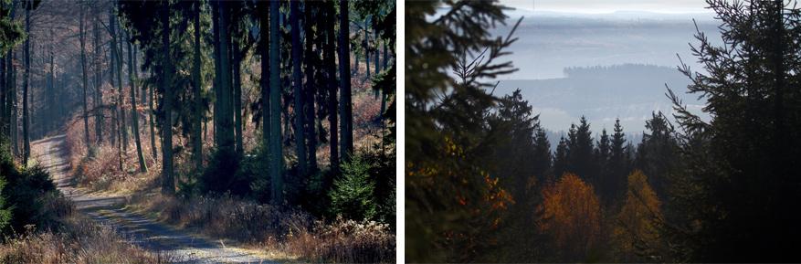 Wandelen in het Kaufunger Wald levert magische uitzichten op! © Frans de Wit via Flickr Creative Commons