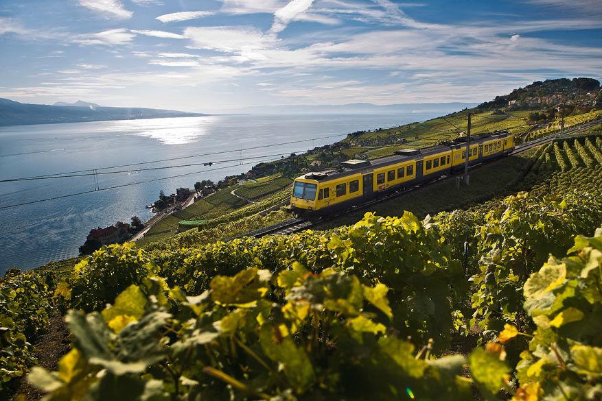 De trein rijdt rustig verder door de wijngaarden van Lavaux. © Toerisme Zwitserland