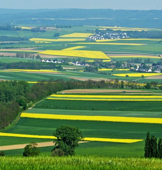 Maifeld in Duitsland: een goed verstopt stukje middeleeuwen