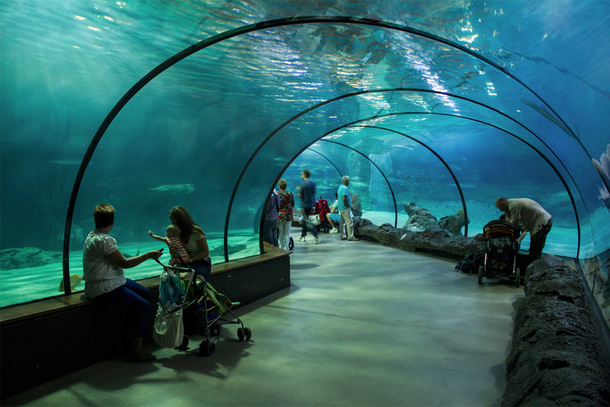 Het grote Oceanium is een attractie op zich! © Lennert Tange via Flickr Creative Commons