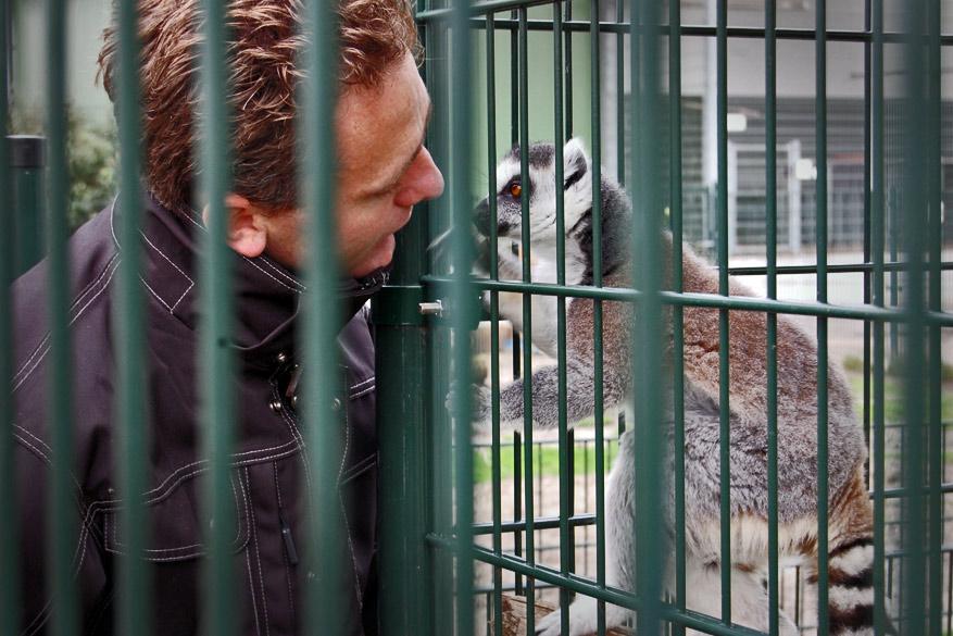 De liefde voor dieren spat er vanaf in het Blanckendaell Park.