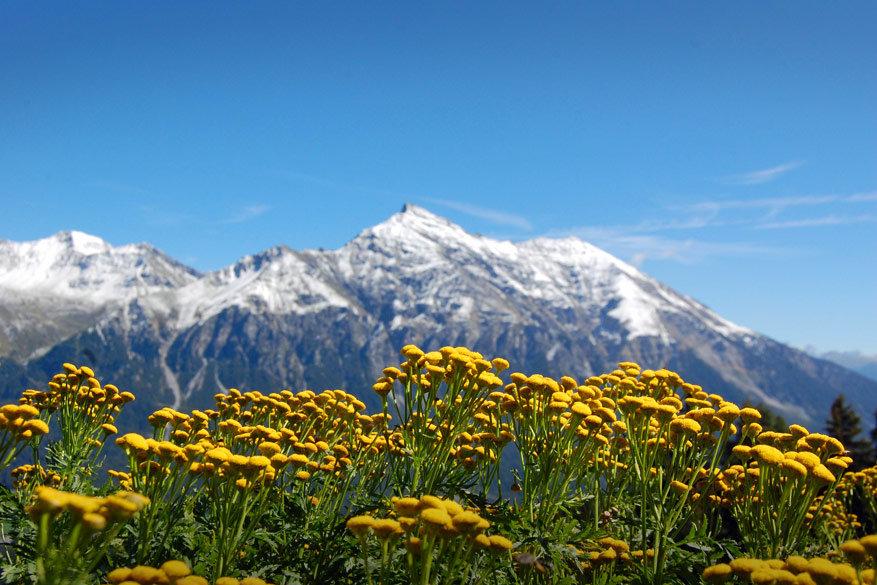 Graubünden verrast winter en zomer!