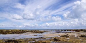Het zilte genot van Noirmoutier