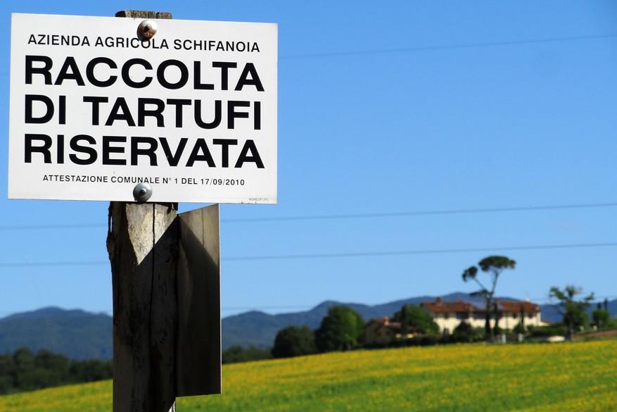 Onderweg krijg je heel wat info over de regio, mits je en woordje Italiaans kent. Dit bord vertelt alvast dat er een privaat reservaat met truffels ligt.