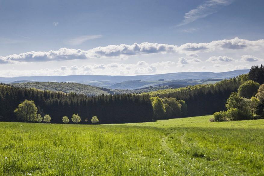 De weidse landschappen van Hunsrück spreken tot de verbeelding