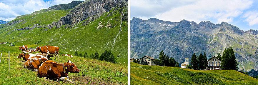 Sankt Moritz en Engadin: het uitzicht in Val Fex