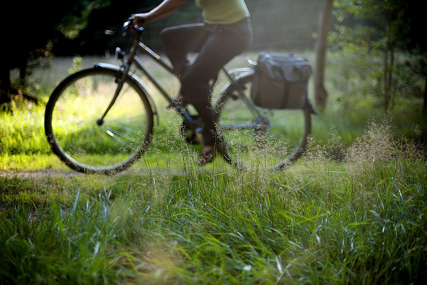 Wielkopolska: muisstil fietsparadijs