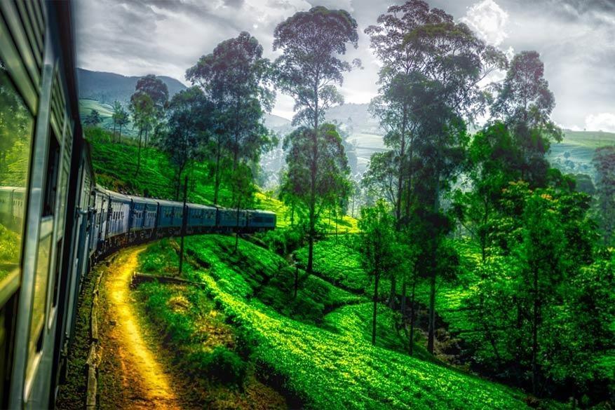 Rondje Sri Lanka met plaatselijk vervoer