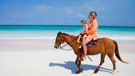 Reis de wereld rond te paard