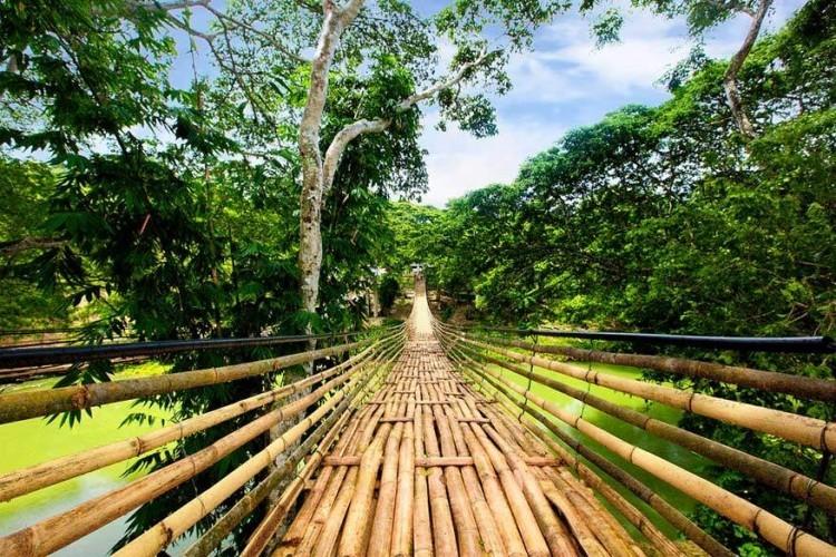 Hangbrug in Bohol, Filippijnen: in het Filipijnse eiland Bohol vind je mooie stranden, de Chocolate Hills, 1268 unieke gelijkvormige heuvels die in het droge seizoen bruin kleuren, het zeldzame miniaapje de Tarsier en knappe koraalriffen. Deze gevlochten hangbrug over de Loboc rivier kom je er ook tegen. Deze hangbrug in Bohol is eigenlijk gemaakt van metaal, maar heeft een bamboelaag om het meer authentiek te laten lijken. Het hangt 24 meter boven de rivier. © Michael Gerard Ceralde