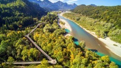 De 10 mooiste Europese boomkruinwandelingen