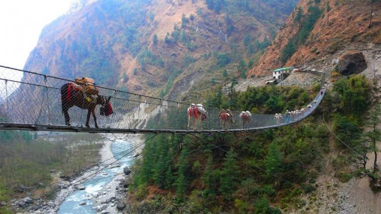 Hangbrug van Ghasa in Nepal: Nepal heeft een ruig berggebied met weinig steden of dorpen. Een groot deel van de inwoners van dit gebied zijn nomaden die rondtrekken. Af en toe kom je wel eens een brug als deze tegen die speciaal werd gebouwd om kuddes dieren makkelijker over te laten steken. Onder andere ezels, koeien en geiten maken de oversteek. © Anita Niza