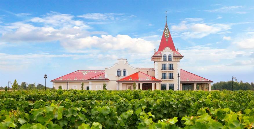 Wijn proeven in Servië: Zvonko Bogdan Winery