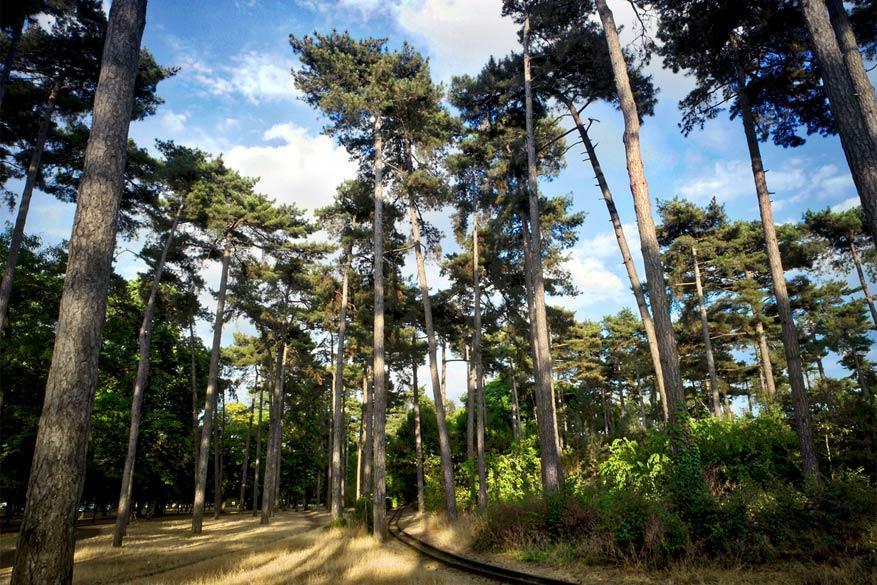 Parijs in het groen: Jardin d'Acclimatation