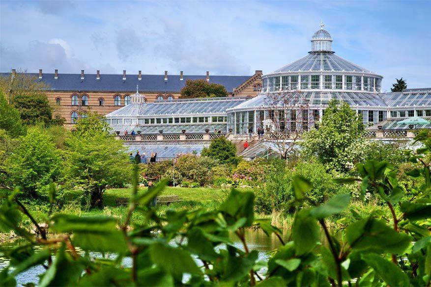 Kopenhagen: de Botanische Tuin