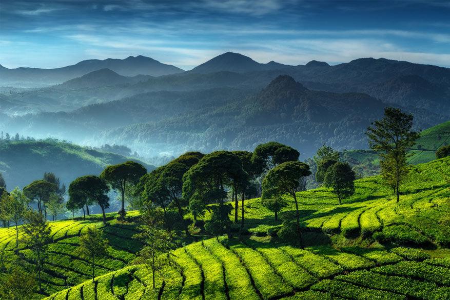 Java: de rijstterrassen van Bandung