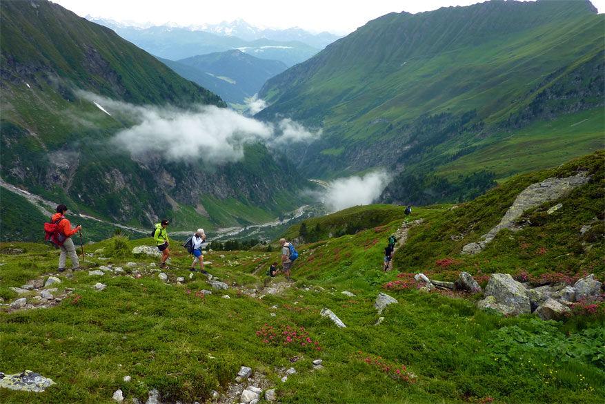 Met de hulp van een berggids kom je op de mooiste plekken in Wipptal