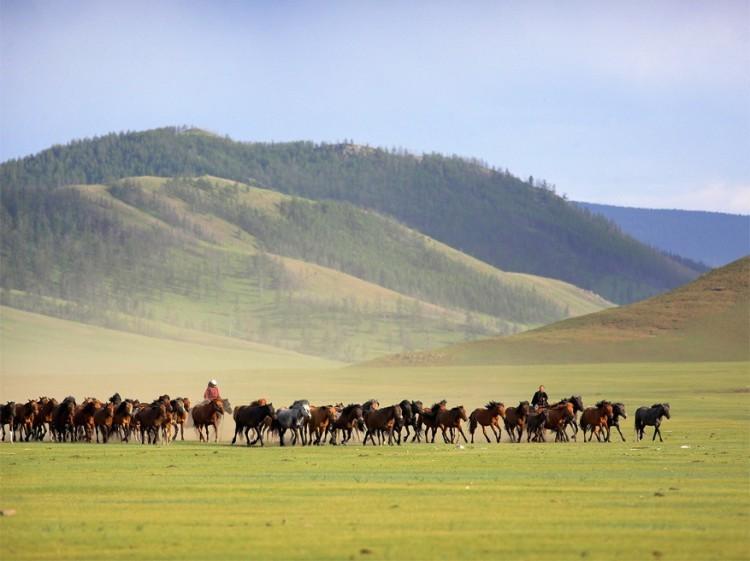 Arkhangai, Mongolië