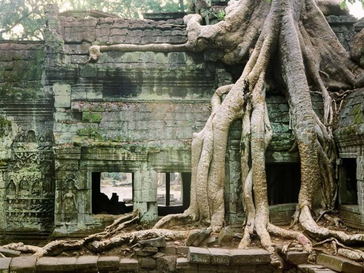 De Angkor tempels, Cambodja