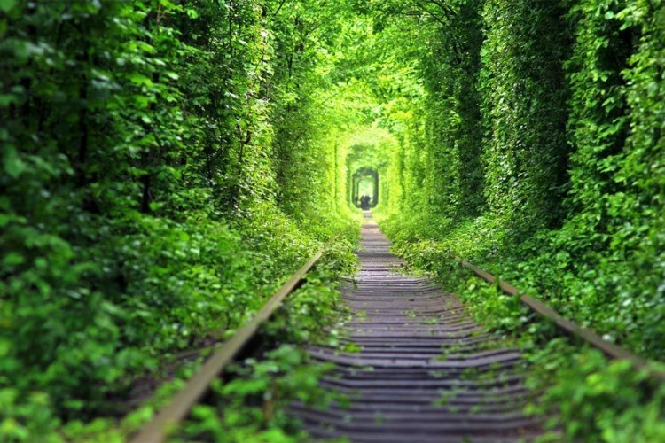 De Tunnel van Liefde vind je in Klevan, Ukraïne. Concreet is dit een drie kilometer lange spoorlijn die leidt naar een vezelplaatfabriek. Drie keer per dag rijdt er nog steeds een trein langs die hout levert aan het fabriek. Weinig romantisch zou je denken, totdat je de groene corridor tegenkomt die veel verliefde koppels aantrekt. Er wordt zelfs gezegd dat als jij en je geliefde er een wens doen, die zal uitkomen. © Olga Radzikh