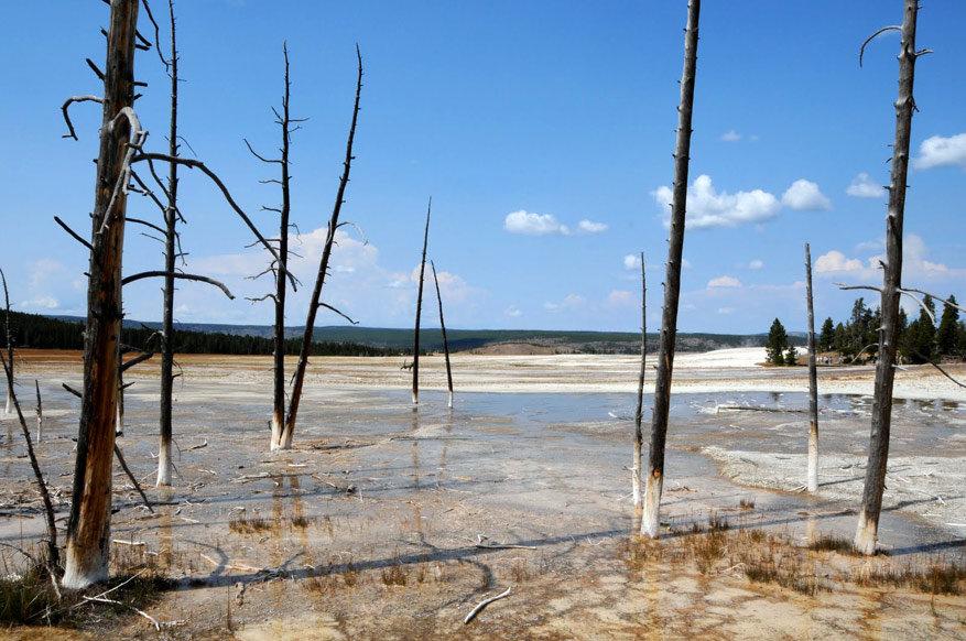 5-USA-Wyoming-Yellowstone-Park-10