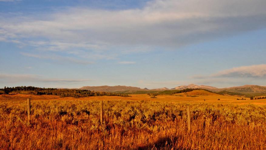 5-USA-Wyoming-Yellowstone-Park-2