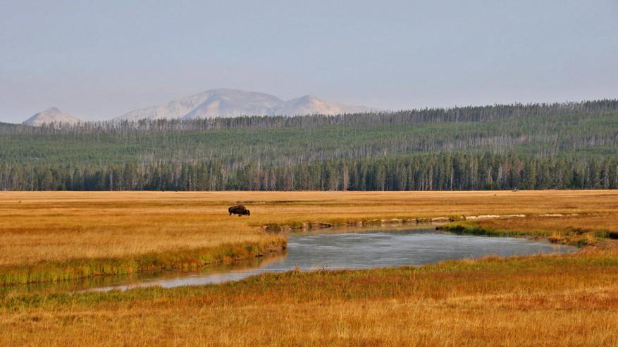 5-USA-Wyoming-Yellowstone-Park-24