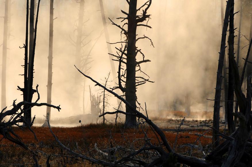 5-USA-Wyoming-Yellowstone-Park-25