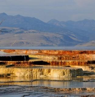 Roadtrip langs natuurscenes in Amerika: van Yellowstone naar Grand Teton National Park