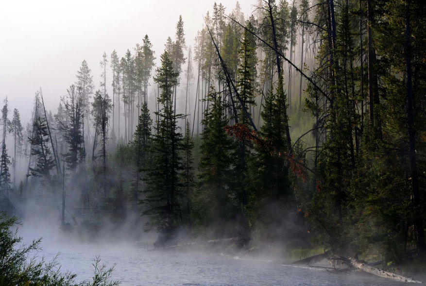 5-USA-Wyoming-Yellowstone-Park-62