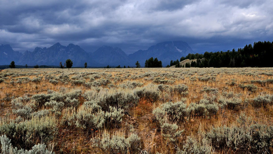 6-USA-Wyoming-Grand-Teton-NP-7