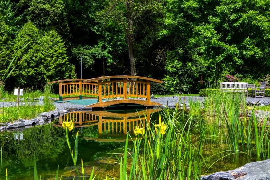 Bad Bertrich zet volop in op genieten in de natuur. © Toerisme Moezel
