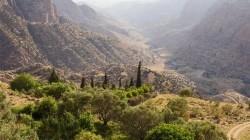 Archeologen ontdekken stenen werktuigen in Jordanië