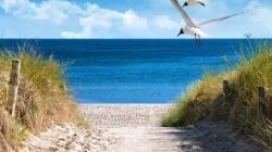 Vier de zomer in een strandhotel