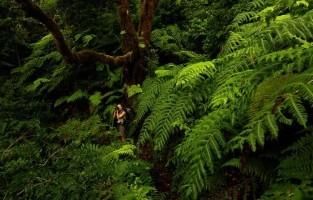 9. Vier de fauna en flora Jungle Park Las Aguilla is een fantastische zoo en botanische tuin van 75.000 m², bestaande uit jungle en meer dan 500 dieren. Je ontdekt er het ongelofelijke ecosysteem en de rijke fauna en flora van Zuid-Tenerife terwijl je wandelt door tunnels, langs hangbruggen, watervallen, lagunes en grotten. Een van de hoogtepunten is de roofvogelshow.