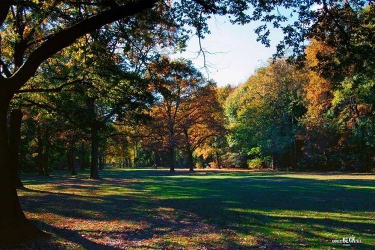 Groβer Tiergarten: in dit park midden in Berlijn kan je fietsen, wandelen, roeien, picknicken, een collectie historische gaslantaarns bewonderen of de monumenten van de Sovjets bekijken. Ze staan op verschillende locaties in de Duitse hoofdstad, zoals in het Treptower Park en in het district Pankow, om de gesneuvelde Russische soldaten bij de Slag om Berlijn te herdenken. © Andreas Beck