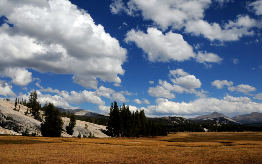 4.-Yosemite24