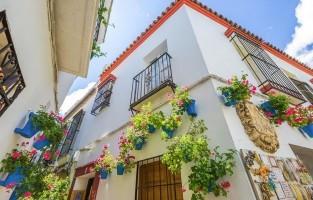 6. De Joodse wijk: misschien wel de meest charmante plek in Córdoba is de Joodse wijk. Smalle straatjes leiden je langs witgekalkte huizen, patio's vol bloemen en kleine rustige pleintjes. Hier hangt absoluut een erg karakteristieke sfeer. Vergeet ook zeker niet de Synagoge en de Casa de Sefarad te bezoeken, twee belangrijke historische plekken in de stad. © Benny Marty