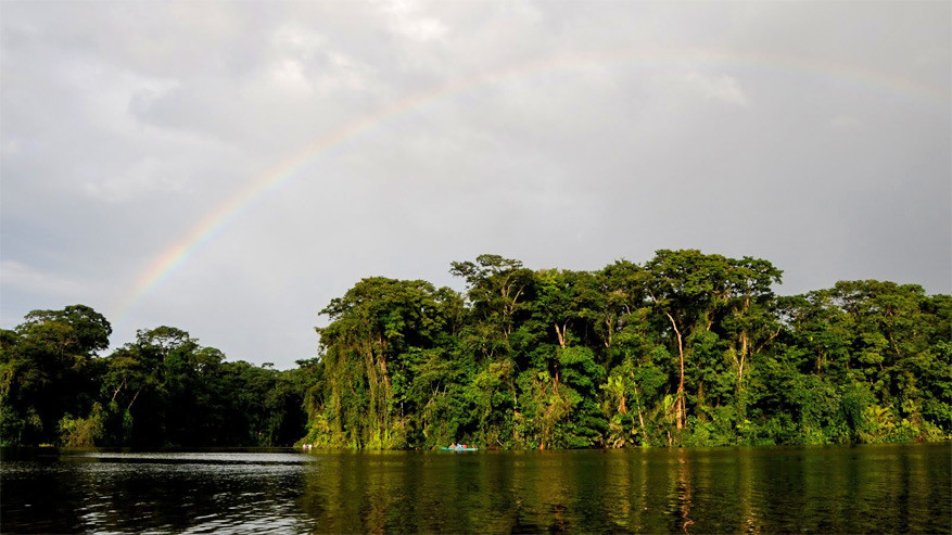 1-parque-nacional-tortuguero5