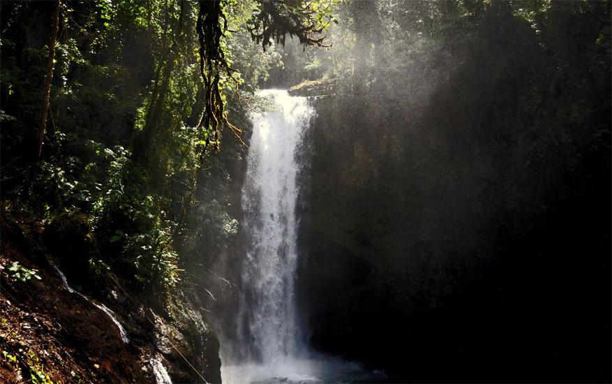 2-la-paz-waterfall-gardens8