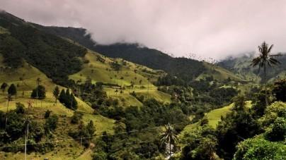 Roadtrip langs natuurscenes in Amerika: Panama en Colombia