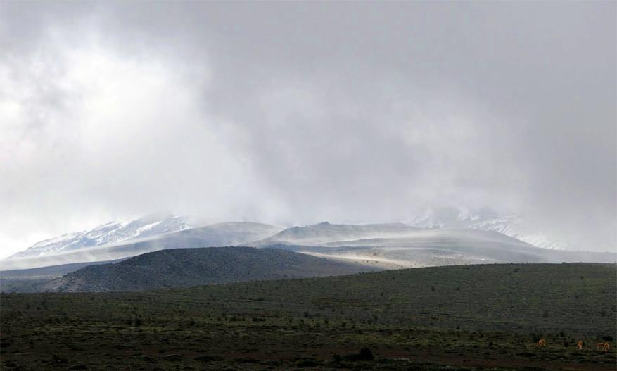 Reserva de Produción Faunistica Chimborazo