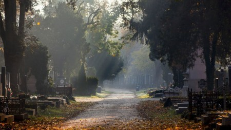 16 begraafplaatsen in Europa om te bezoeken voor je sterft